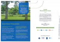 élagage des arbres lignes électriques